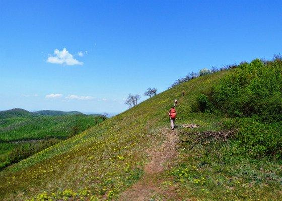 Barangolás & wellness a tavaszi Börzsönyben