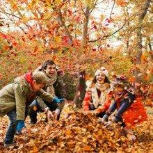 Aktív erdei őszi szünet